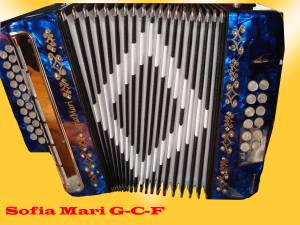 Sofia Marie 3-row w/ Sm-57 internal mic. key of G-C-F. Chinese made$225 includes case